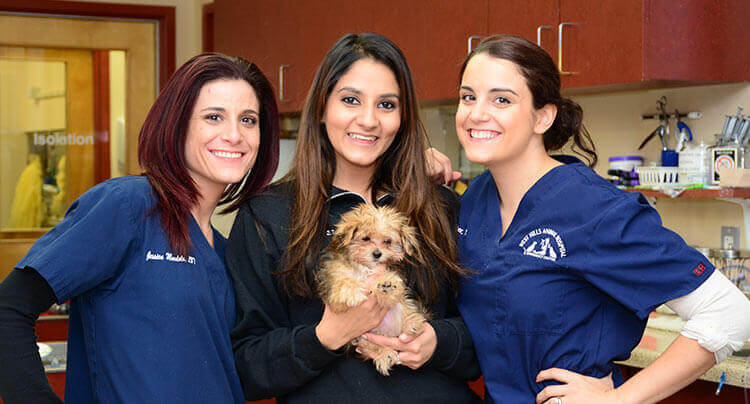 Take a video tour of our award winning Animal Hospital in Huntington, NY