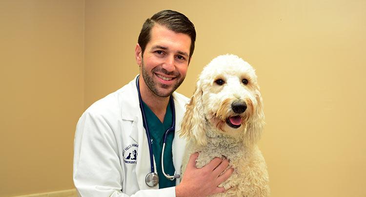 jared-coren-veterinarian5