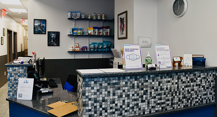 Reception Area at Court Square Animal Hospital